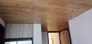 American White Oak Ceiling @ Park Place Residences